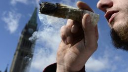 CANADIANS HAVE SPENT $908 MILLION AT RECREATIONAL CANNABIS STORES SINCE LEGALIZATION, STATCAN