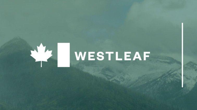 Westleaf Inc. Announces Resignation of President