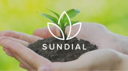 Sundial CEO and COO abruptly resign