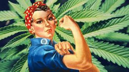 Women & Weed - Experiences in the Cannabis Industry