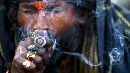 Nepal lawmakers seek to legalize growing, using marijuana