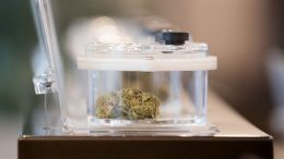 COVID-19: Canadians having to risk exposure for access to Medicinal Cannabis