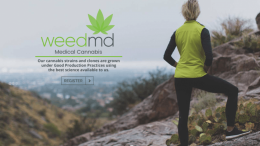 WEEDMD RETURNS FIRE TO STAVE OFF POTENTIAL UNION INFECTION