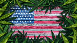 Why Medical Marijuana in the United States Should Be Legal
