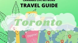 The Ultimate Stoner's Guide to Toronto [TRAVEL GUIDE]