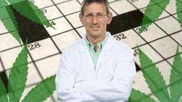 Cannabis-Crossword_-Need-Answers_-Ask-An-Expert-Dr.-Markus-Roggen