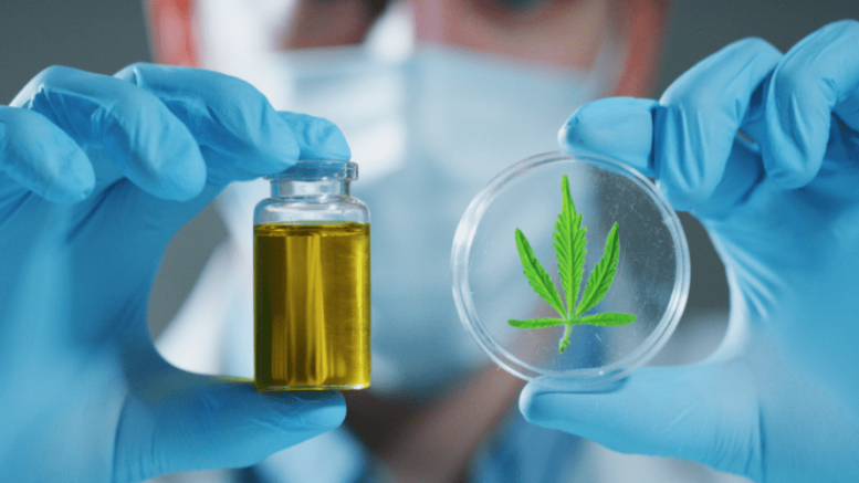 microbiome and cannabis for covid-19 prevention