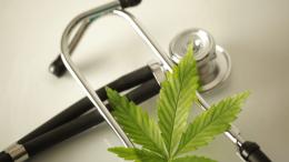 medical-cannabis-crossword-puzzle