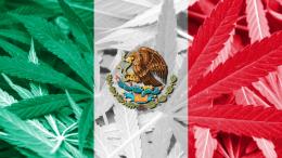 Mexico-Decriminalizes-Recreational-Cannabis