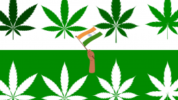 types-of-weed-in-India