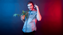 General-Knowledge-Cannabis-Crossword-Culture-Music-and-Movies